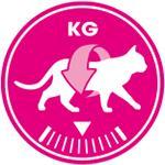理想的な体重を維持