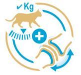 理想的な体重と健康な関節の維持