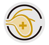 下部尿路の健康維持